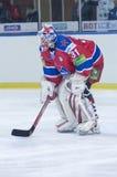 Hockey goaltender Rastislav Stana Royalty Free Stock Photo