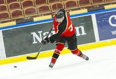 Hockey. Ice Hockey Player shoots a slap shot royalty free stock images