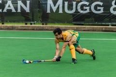 Hockey internationales Argentinien V Südafrika Stockfotografie