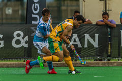 Hockey internationales Argentinien V Südafrika Lizenzfreies Stockbild