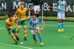 Hockey internationella Argentina V Sydafrika Royaltyfri Bild