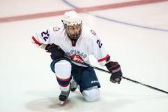 Hockey mit dem Kobold Stockbild