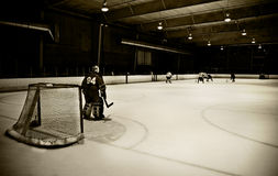 Hockey net Stock Images