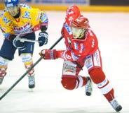 Hockey players Royalty Free Stock Photo