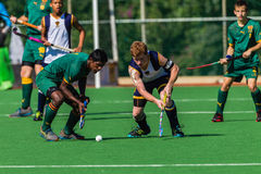 Hockey Players Challenging Possesion Ball Royalty Free Stock Images