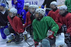 Hockey players in training Royalty Free Stock Image