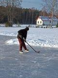 Hockey on pond 3 Stock Photography