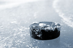 Hockey puck Royalty Free Stock Images