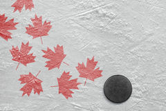 Hockey puck and maple leaves Stock Photo