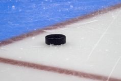 Hockey puck stand on side on goal line. Close view stock images
