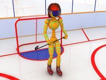 Hockey stadium with hockey  #4 Stock Photography
