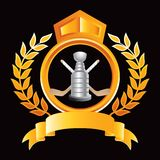 Hockey sticks and trophy in royal orange crest. Orange royal display of a hockey trophy and crossed sticks Stock Photography