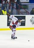 Hockey su ghiaccio Fotografie Stock Libere da Diritti