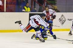 Hockey su ghiaccio Fotografia Stock