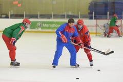 Hockey su ghiaccio Fotografie Stock