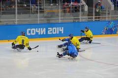 Hockey su slittino Fotografie Stock Libere da Diritti