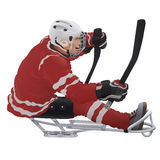 Hockey su slittino Immagine Stock