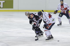 Hockey sur glace Photographie stock