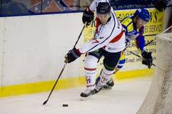 Hockey sur glace image libre de droits