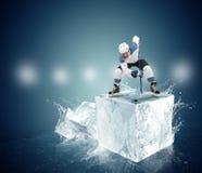 Hockeyspeler op het ijsblokje - gezicht-van ogenblik Royalty-vrije Stock Afbeeldingen