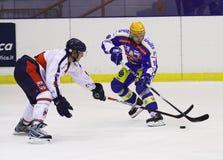 Hockeyspieler Lizenzfreies Stockfoto