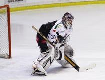 Hockeyspieler Lizenzfreie Stockfotografie