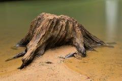 鞋帮落在老人的洞, Hocking小山国家公园,俄亥俄 免版税库存图片