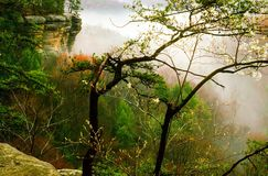 Hocking Hills in Ohio. Conkles Hollow in Hocking Hills Ohio Royalty Free Stock Image
