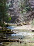 Hocking Hills. Trees, Plants, Streams, Waterfalls Royalty Free Stock Photos