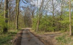 Hodonin和Ratiskovice镇之间的道路 免版税库存照片