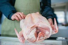 Hodować: kurczak i indyk Uprawiać ziemię w dalekiej północy Rosja Obrazy Royalty Free