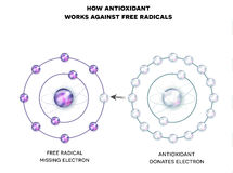 Hoe de anti-oxyderende werken tegen vrije basissen stock illustratie