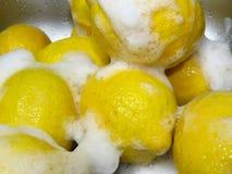 Hoe te om citroenen te wassen? Sappige rijpe gele die citroenen met wit zeepschuim worden behandeld Gezonde tropische fruitrijken stock foto
