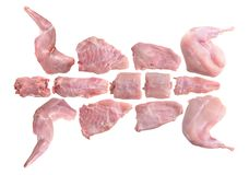 Hoe te om een konijn voor te bereiden voor het koken royalty-vrije stock afbeeldingen