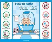 Hoe te om Uw Katten vector grafische gids te baden Royalty-vrije Stock Afbeeldingen