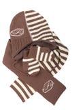 Hoed, de vuisthandschoenen en de sjaal van kinderen de gebreide. Stock Afbeelding