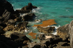 Hoefijzer Baai de Bermudas Stock Fotografie