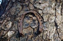 Hoefijzermeer Trailhead Drie oude roestige hoeven die op een boomboomstam hangen royalty-vrije stock afbeelding