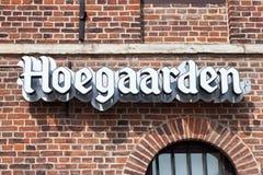 HOEGAARDEN BELGIEN - SEPTEMBER 04, 2014: En inskrift Hoegaarden på en gammal vägg för röd tegelsten royaltyfri bild