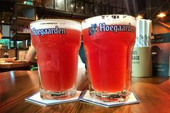 Hoegaarden draft Belgium beer in large size glass Royalty Free Stock Image