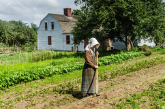 Free Hoeing - Old Sturbridge Village - Sturbridge, MA Royalty Free Stock Image - 95998876