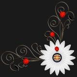Hoek met abstract madeliefje rode lieveheersbeestjes op een zwarte achtergrond royalty-vrije illustratie