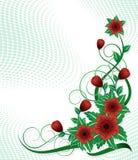 Hoek met rode bloem Stock Foto