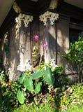 Hoek van Balinese tuin Stock Afbeelding
