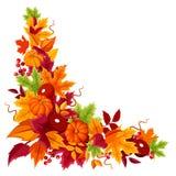 Hoekachtergrond met pompoenen en kleurrijke de herfstbladeren Vector illustratie Stock Foto's