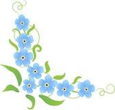 Hoekpatroon met bloemen van vergeten-me Stock Foto