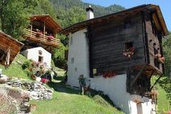 Hoektand in Zwitserse Alpen Royalty-vrije Stock Fotografie