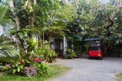 Hof eines tropischen Landhauses in Sri Lanka stockbilder