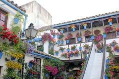 Hof eines typischen Hauses in Cordoba Lizenzfreies Stockbild