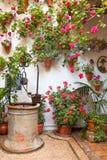 Hof mit den Blumen verziert und altem Brunnen Stockfotografie
